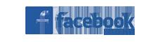 Facebook Insight Logo